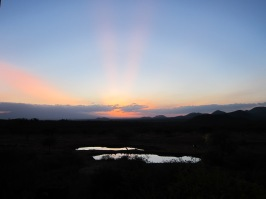 Sunset over the watering hole