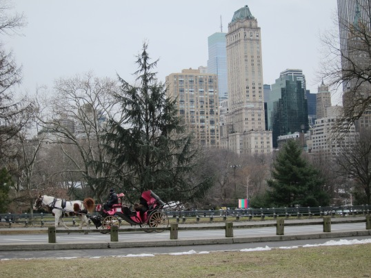 Carriages in Central Park